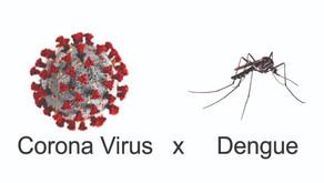 Estamos focando no corona vírus e esquecendo da Dengue.
