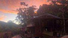 Bosque Medicinal se registro en línea como un centro de investigaciones al Sur del Ecuador