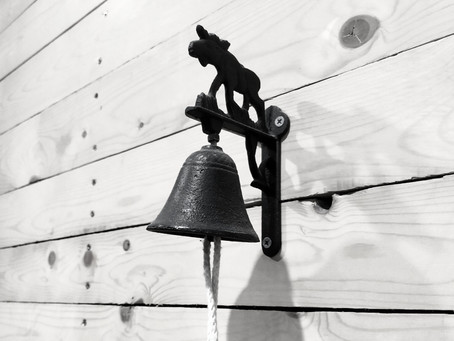 24 Dicembre: Ring the Bell 2019