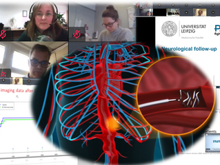 Research goes on! PAPAartis meets virtually to discuss progress and plans.