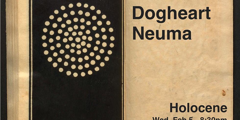 Norman, Dogheart, Neuma @ Holocene