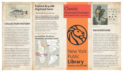 brochure NYPL  1.3_Page_1