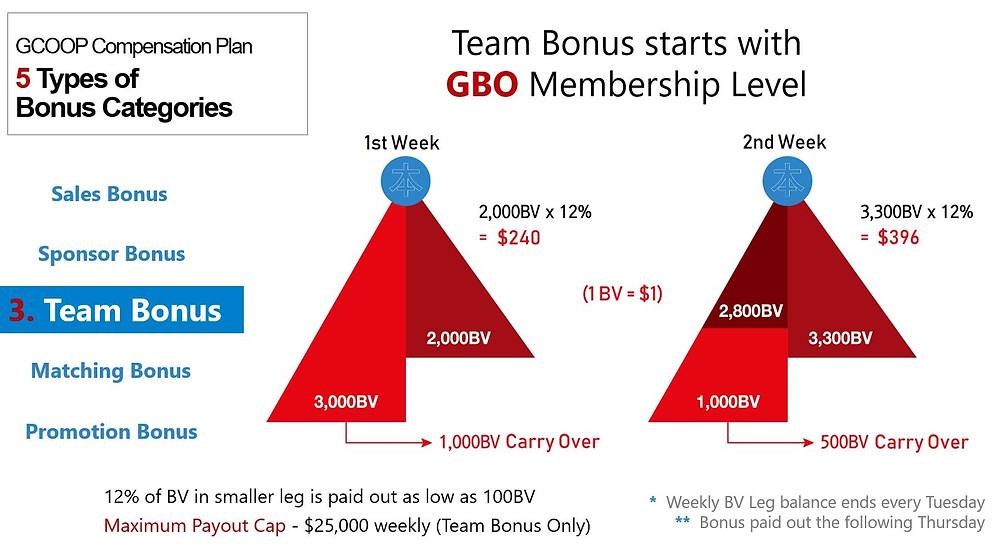 GCoop Team Bonus Compensation Plan