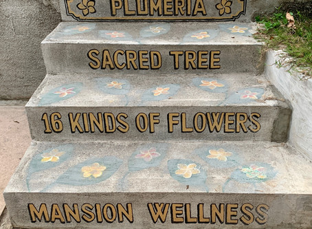 Honor your dwellings with natural hand lettering