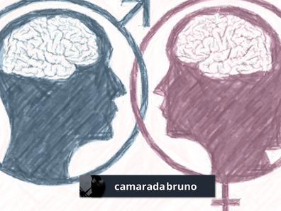 """""""Construcción social"""": ¡El novilenguaje es una desgracia! (Bruno Torres)"""
