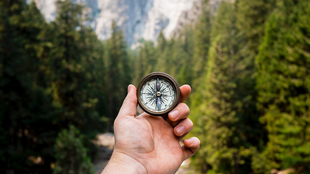 Find your own purpose for existing. Compass find your way and your own purpose to fight global warming and become more sustainable everyday with Climate Coping. Become a Climate Coper today. Plant trees with the green shop.