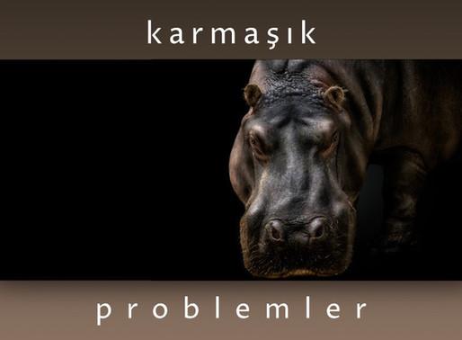 Karmaşık Problemler
