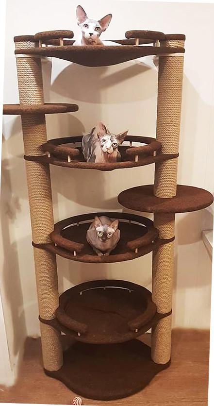 Игровой комплекс для кошек недорого - ETEREO