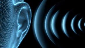 Akustik Proje & Akustik Rapor