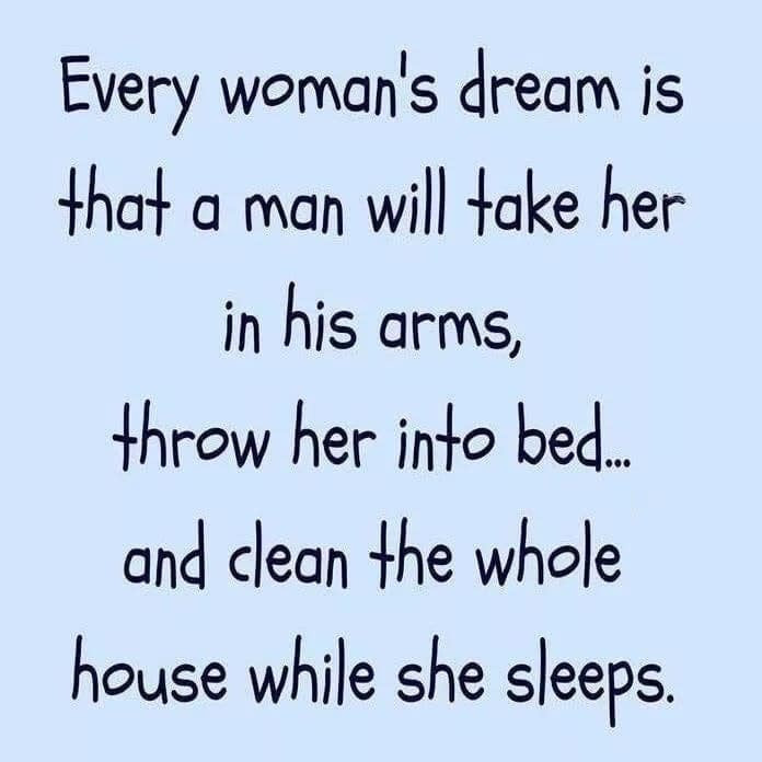 Every woman's dream is that a man will take her in his arms, throw her into bed & clean the whole house while she sleeps Meme