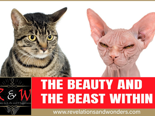 The Beauty and The Beast Within