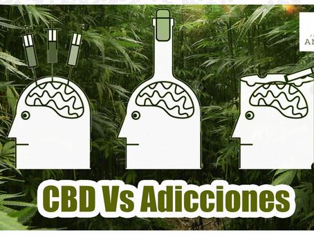 Estudio encuentra que el uso de CBD ayuda a prevenir recaídas en adicciones.