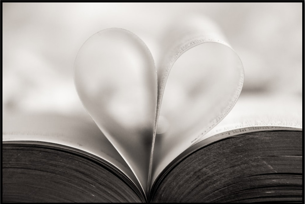 heart between books pages
