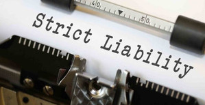 Comparison of Strict Liability in Common Law and in India