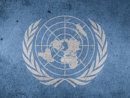 COMMENT: United Nations High Commissioner Report A/HRC/44/26