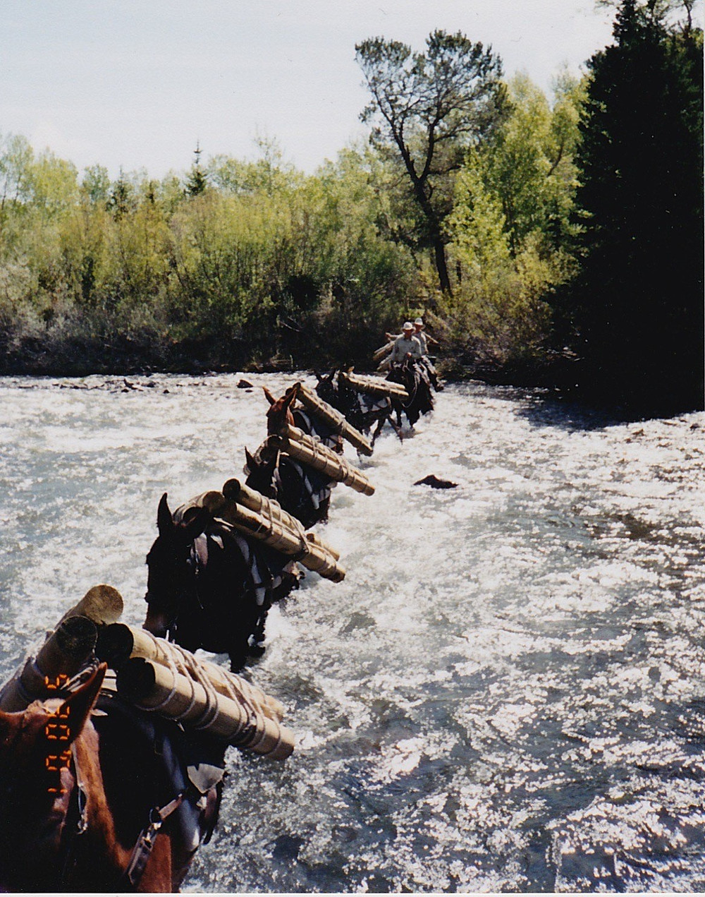 River Crossing - Pack string