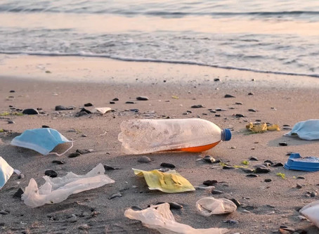 """""""A Pandemic of Plastic Pollution"""""""