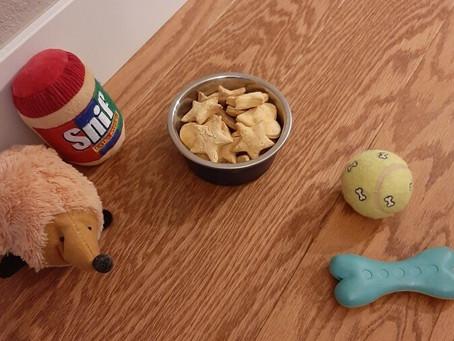 Tasty Dog Treats