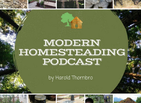 """The """"Other"""" Homesteading Skills"""