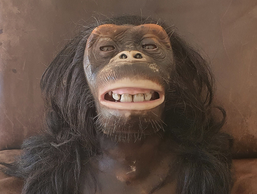 Animatronic Chimpanzee