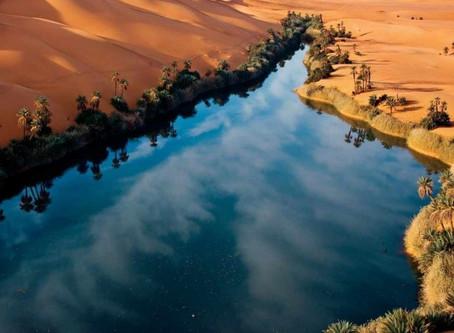 Desert Oasis (1:12-14)