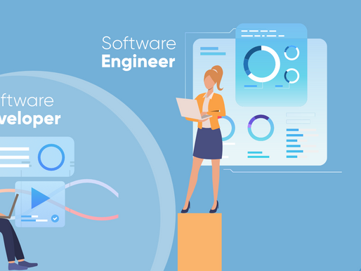 What is Developer means to Consulting ?