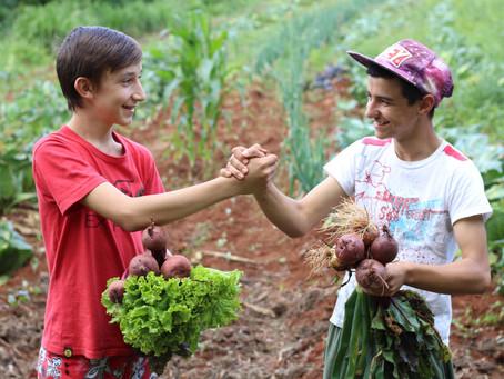 Programa de agroecologia completa dois anos