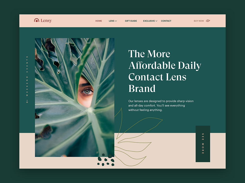 Lenses Store Overview of User Interface Design