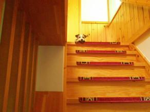 二階で待っています。