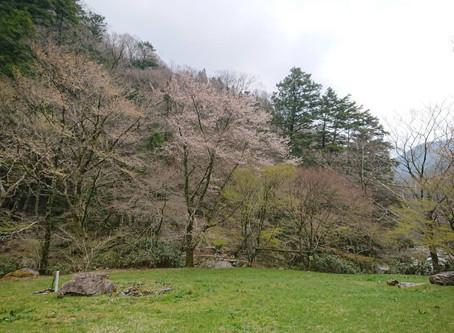 2020/4/20 廻り岩キャンプ場閉鎖のお知らせ