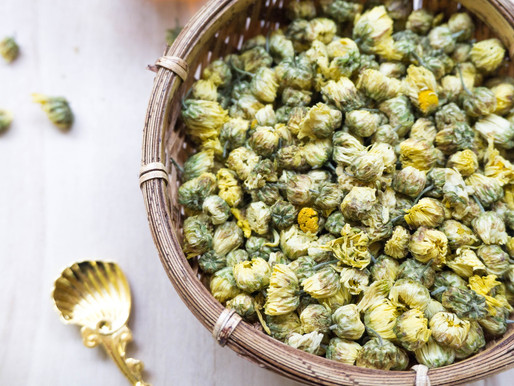 Launch of in-house tea: Baby Chrysanthemum Tea