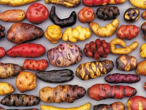 Картофите в Перу