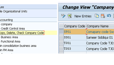 Configuration of TM (Transportation Management) Enterprise structure
