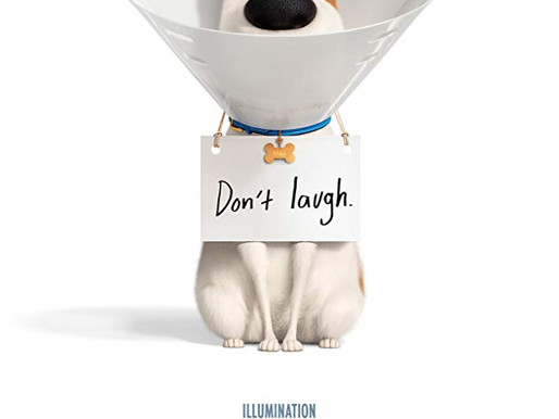 The Secret Life of Pets 2 film review