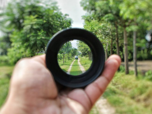 AUTHORS: FINDING FOCUS IN CHALLENGING TIMES