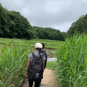 梅雨の六道山公園