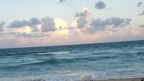Miami em 4 dias (parte 2): compras, praias e passeios