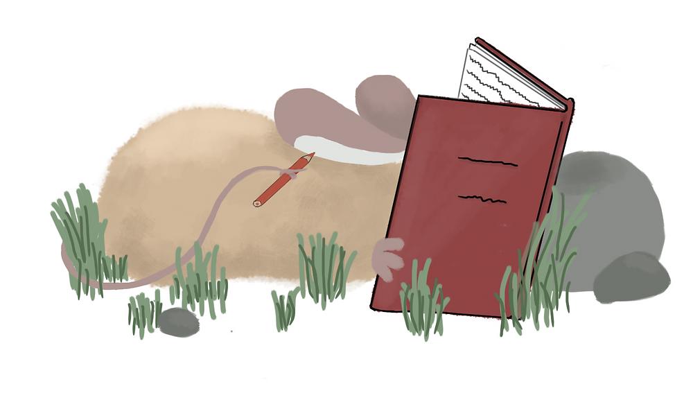 Maus schreibt Tagebuch; Kindergeschichte zum Vorlesen