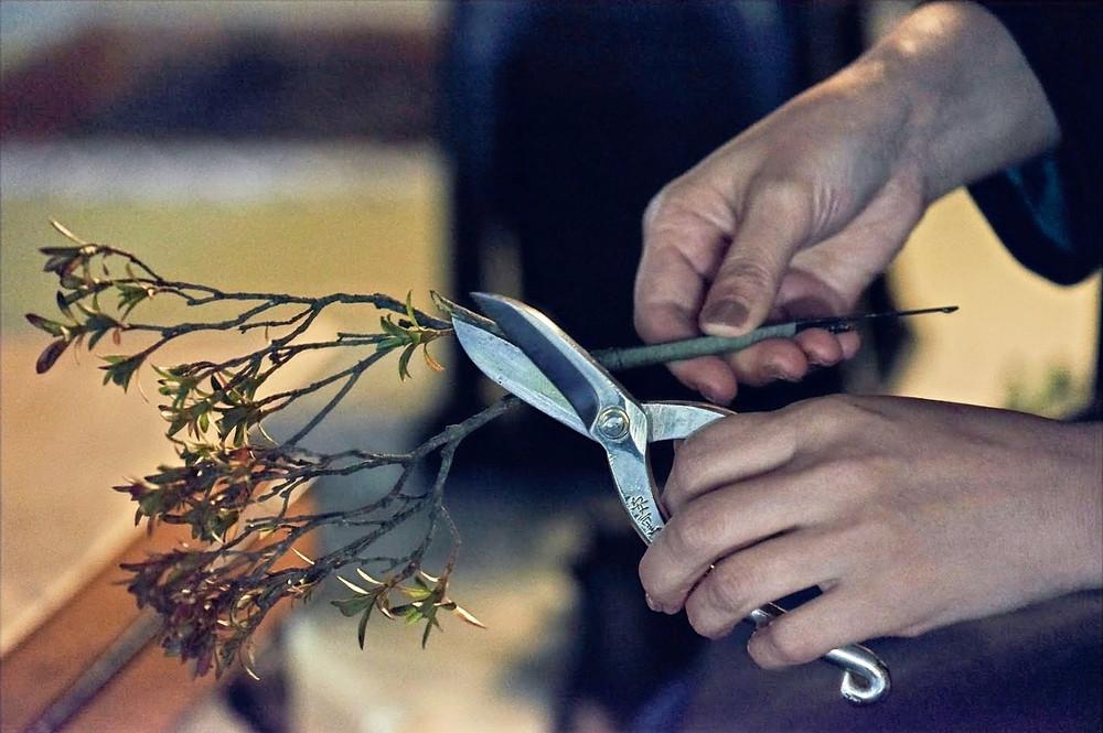 Ikebana scissors