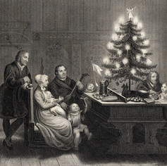 Ancient Origins of the Christmas Tree - A Guide for Kids