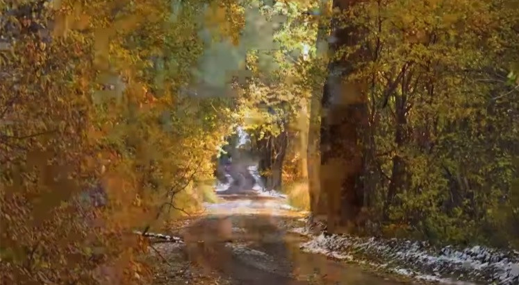 Montana Autumn Backroad