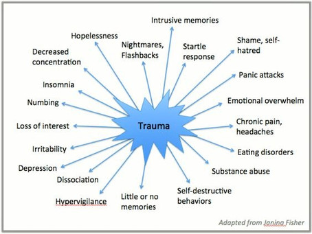 What The Cognitive, Physiological & Emotional World of  Trauma can Look & Feel Like