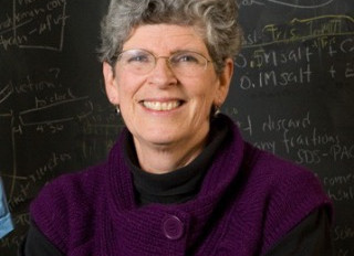 Food and Chemistry: An Interview with Professor O'Hara