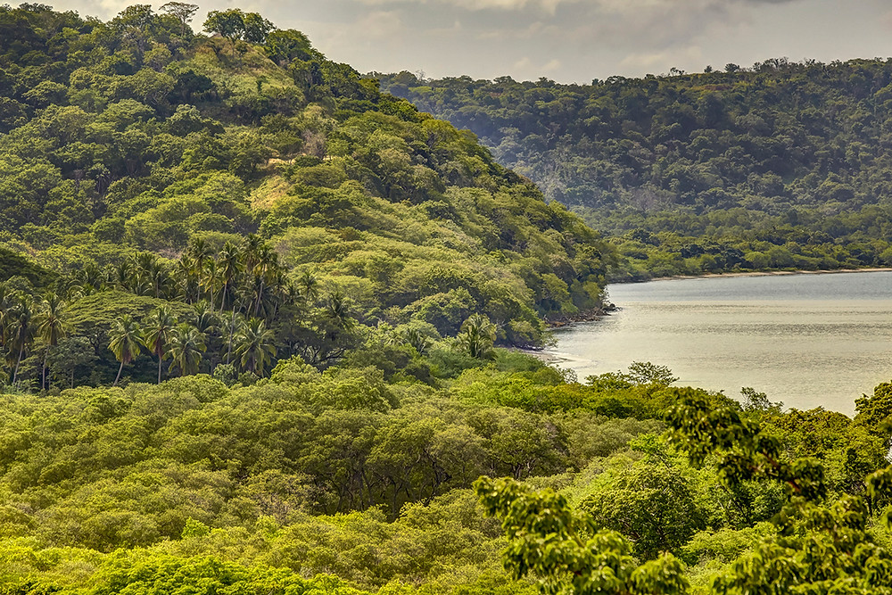 Explore Costa Rica with Beach Bum Vacations!