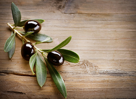 Dec Olive Mill Application Now Open