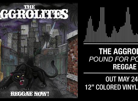 New Aggrolites material