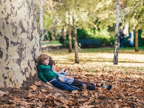 children sitting in autumn leaves against a big tree