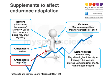 Effects of dietary supplements on adaptations to endurance training