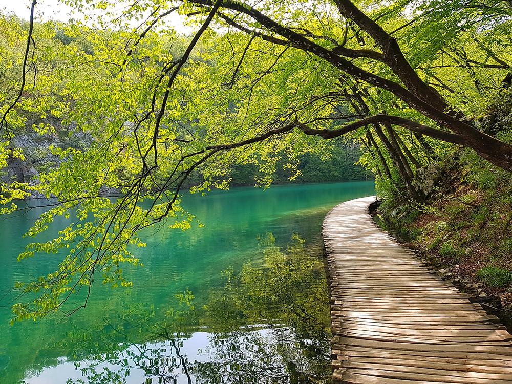 Beautiful lake at Plitvicka Jezera Kroatie