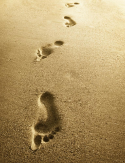 Don't Forsake the Footsteps